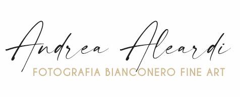 Andrea Aleardi
